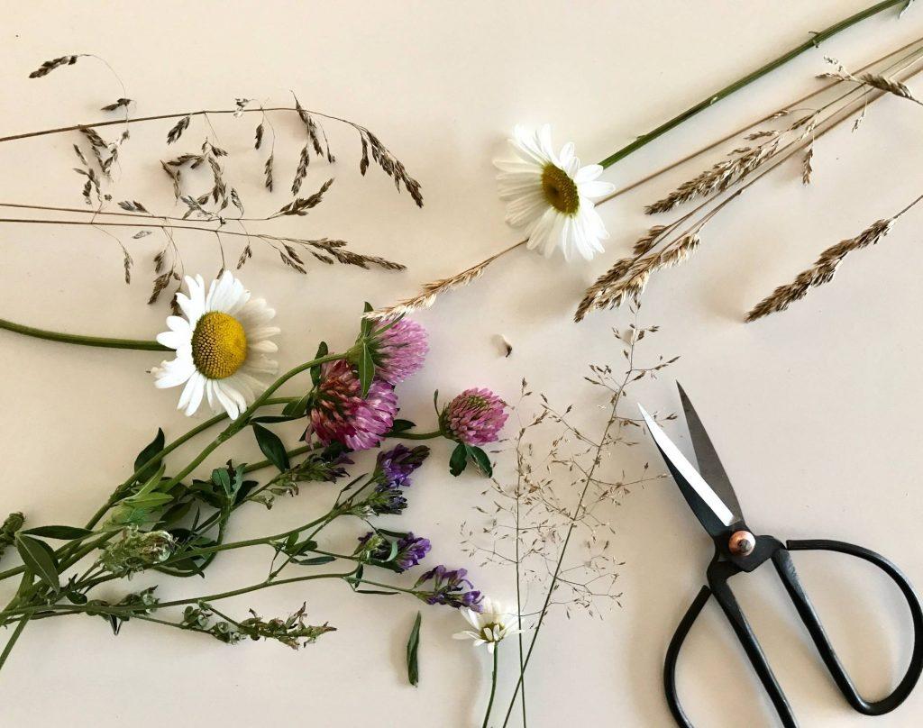 blommor att pressa